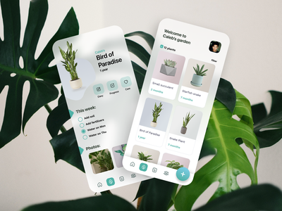 Florish App illustration vector branding mobile app app housing plants decor house green plant mobile design ui