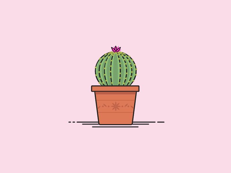30 Minute Challenge - Potted Plant house plant succulent pot terra cotta cacti cactus potted plant plant