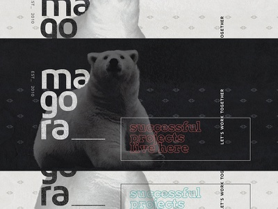 Magora about shot 2