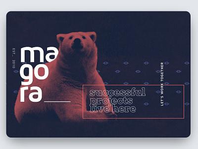 Magora Bear Shot Update web site font develop composition bear about