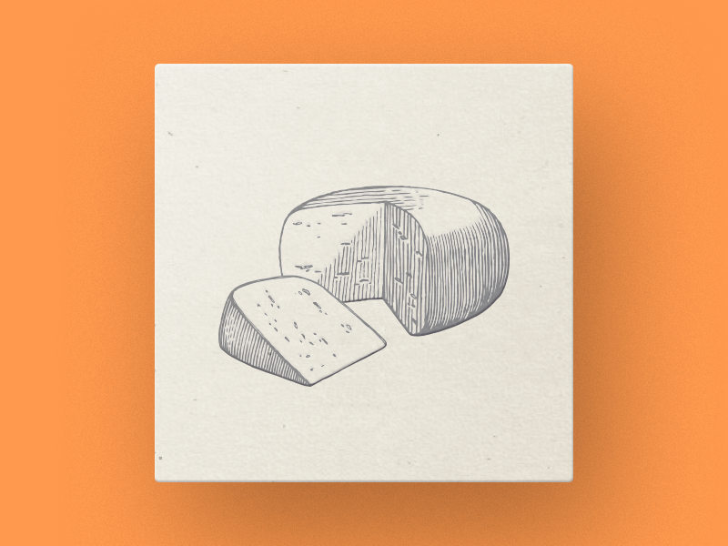 Cheese technique pencil pen paper old cheese illustrator engraving drawing piece