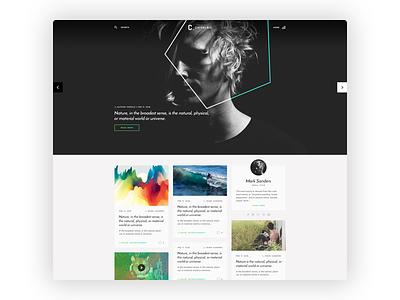 Chivalric Blog Template responsive themeforest design theme template wordpress blog