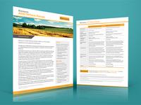 Riemann Wheat Swaps Brochure