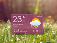New Shot - weather widget