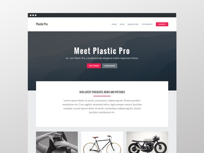 Plastic Pro masonry ux ui theme homepage genesis clean