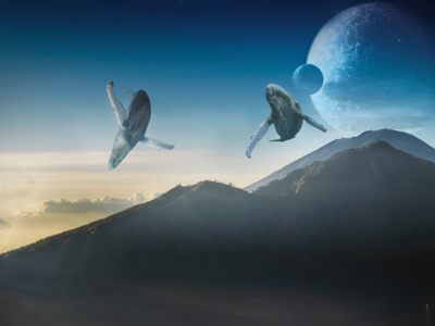 Whales design surrealist daily everyday sci fi photoshop surreal art whales surreal