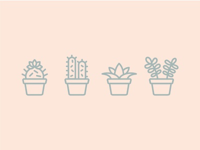 My Plants illustrations icons cactus succulents plants