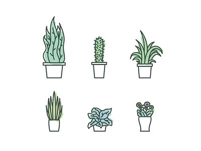 Plants outline flat vegetal cactus green lines strokes illustration vector plant