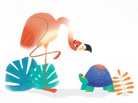 Flamingo & Turtle 🐢