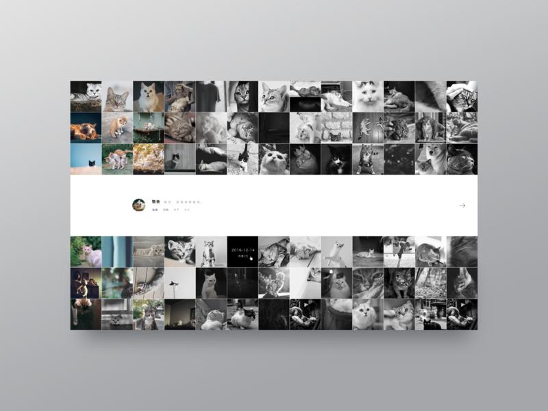 LOFTER design ui web