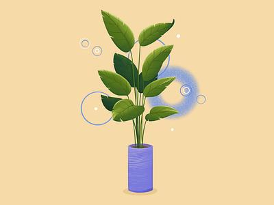 Plant in the pot green plants illustration flower