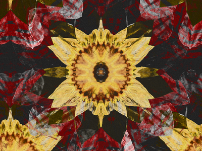 Abstracti Flower textile pattern textile design textile design kaleidoscope abstract digitalart ericfickes