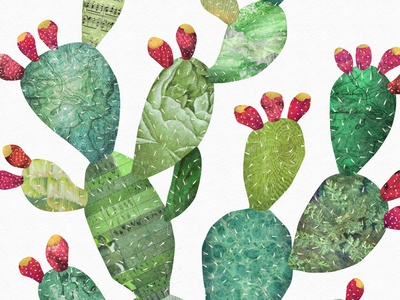 Prickly Pear prickly pear cactus collage illustration vintage