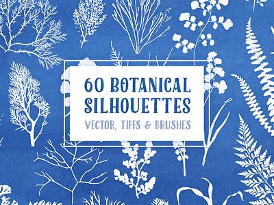 60 Botanical Silhouettes Pack creative market silhouettes elements nature botanical raster vectors brushes 60