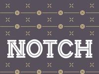 Notch sample 620