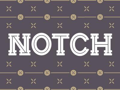 Notch 400x300