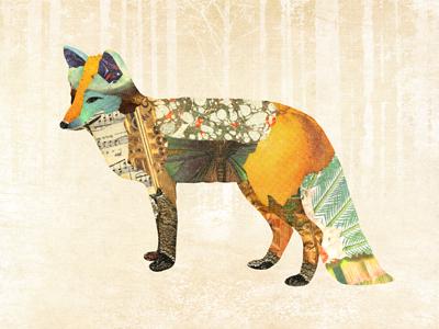Dribbble fox