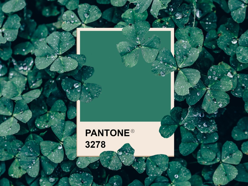 St. Patricks Day march graphic  design graphic art lucky green st patricks day pantone