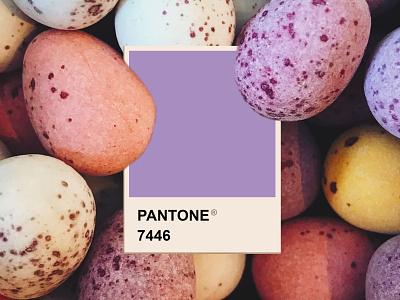 Easter design easter pastels purple color palette pantone