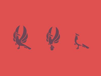 Phoenix Concepts 2
