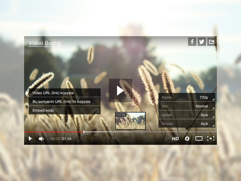 video player skin tv hürriyet ui content skin player video
