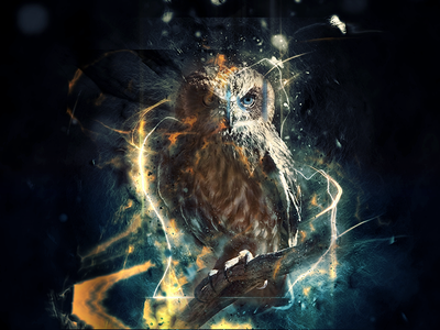 Advancing Progress cyber scifi effect retouching photoshop design owl