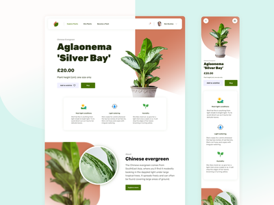 Plant shop UI Challenge ecommerce shop leaf user interface search green plant logo ui typography design branding