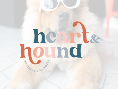 Heart & Hound | Boutique Dog Spa and Hotel spa logos spa branding logo design graphic design design