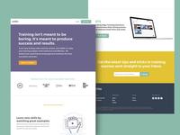Viddler Web Design June 2017