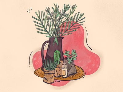 Plants around the house | Illustration