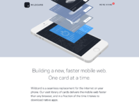 Wildcard landing page 2x