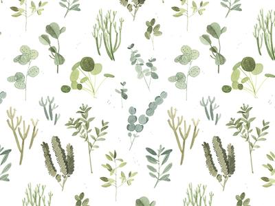 Plant Pattern plant pattern pattern house plants succulents plants illustration