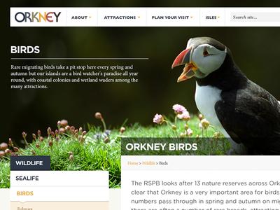 Dribbble Orkney