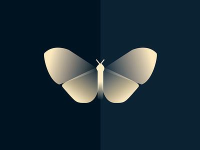 Streetlight Animations map napoleon butterfly lottie gradient vector illustration animation