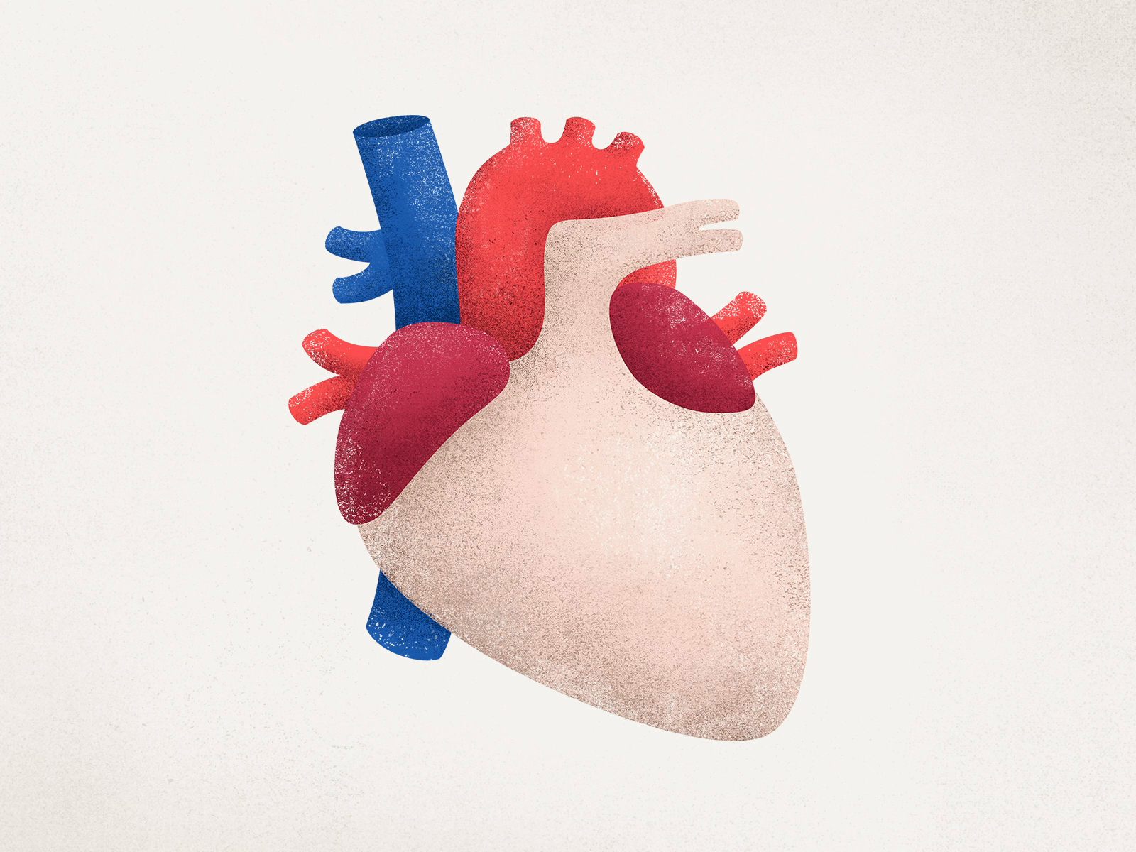 Donor campaign dribbble all organs