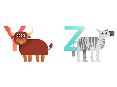 Y & Z