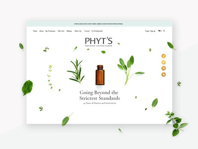 PHYT's website header ecommerce skin care woocommerce responsive plants botanical hero image ux ui website the banner years gold