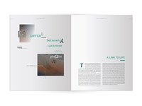 Ecology TimeLife Book