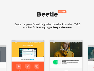 Beetle HTML5 Template html5 template themeforest portfolio parallax responsive resume landing psd