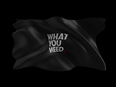 WhatYouNeed illustration branding webdesign casestudy octane c4d render 3d