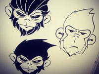 Monkey Concepts