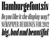 Diploma Typefaces
