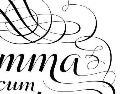 Summe cum Lauder lettering typopraphy