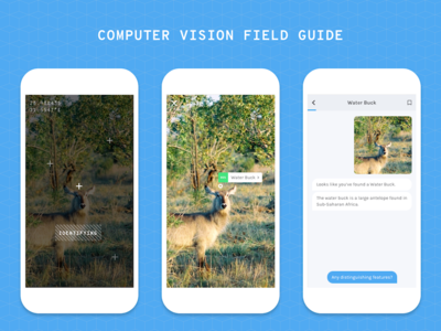 Computer Vision Field Guide bot conversational education concept mobile travel nature augmented reality computer vision