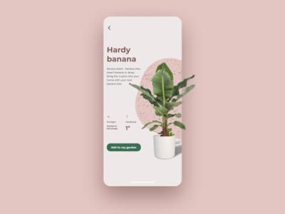 Plant app teatro pink rose green texture ceramic illustration inspire card app mobile ecommerce shop concept interface ux ui tropical banana plant