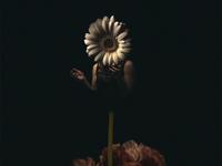 Flower Cry