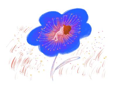 Stamen 花蕊