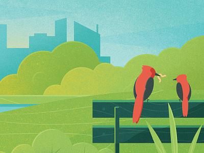 Momma bird photoshop print nature city urban worm bird illustration drawing vector