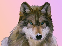 Wolf | LowPoly Illustration