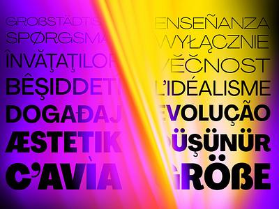 Agrandir Typeface variable font display font web font light font bold font typographer typeface designer typeface design type designer type design font designer font design custom font font family free typeface typeface free fonts fonts free font font